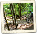 Mountain Biking at Carrick Tract